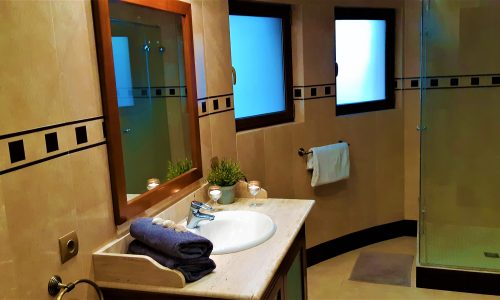 Large bathroom with toilet and shower3